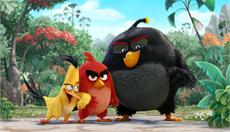 ANGRY BIRDS: US-Synchronstimmen und First Look-Bild