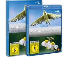 DVD-VÖ   SCHNELLER ALS DAS AUGE: Im Reich der Superzeitlupe